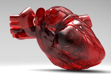 Три типа кардиомиопатии