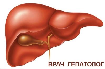 кто лечит печень,лечение поджелудочной железы,симптомы заболевания печени,