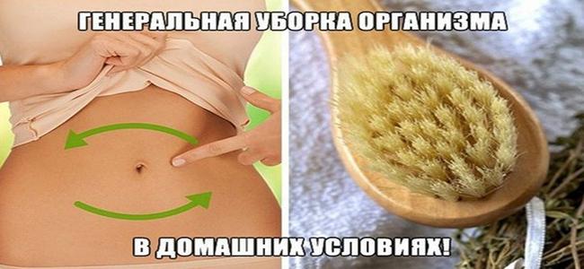 очистка от шлаков и токсинов